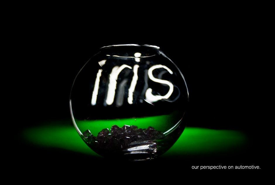 iris | paint distribution | green bowl